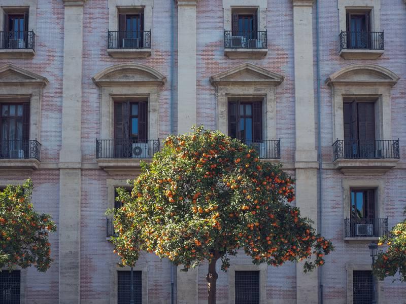 Ulica u Valenciji