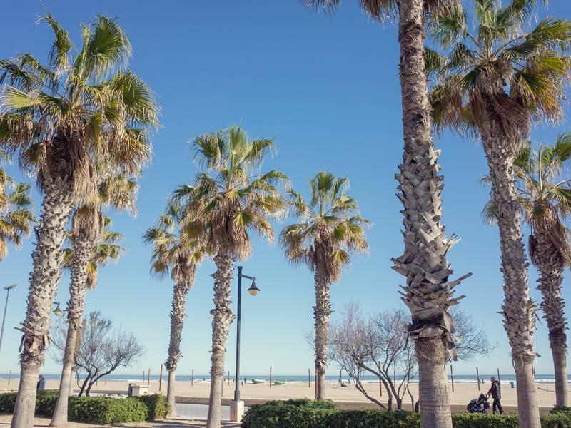 Glavna plaža, Valencija